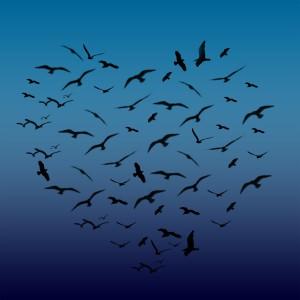fåglar i hjärtformation